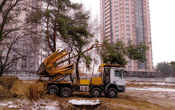 Не вырубят, а пересадят: при строительстве ЖК Квартал Аллей сохранят максимум деревьев